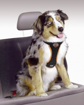 Harley-Davidson® Car Harness