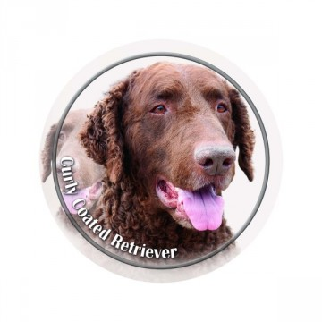 Curly coated retriever 3D Dekal