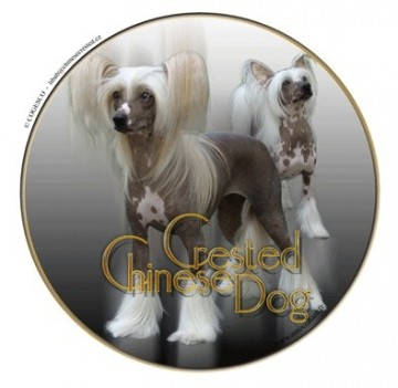 Chinese Crested Dekal