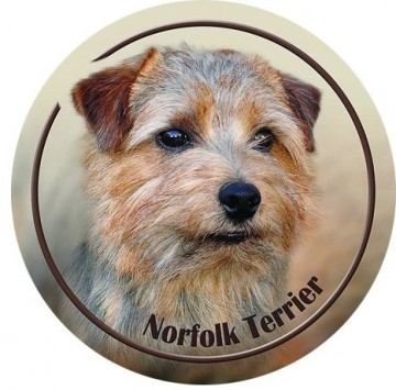 Norfolk Terrier 3D Dekal