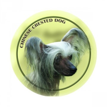 Chinese Crested 3D Dekal -2