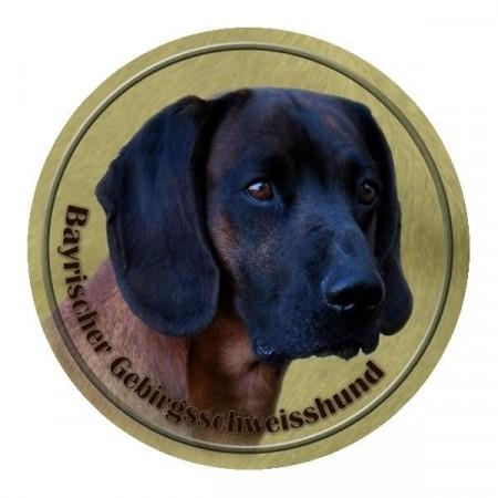Bayersk viltsporhund
